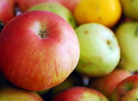 Se hvordan frugt går i forrådnelse.