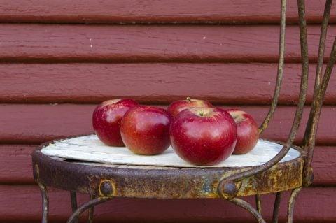Sådan får du brugt æblerne