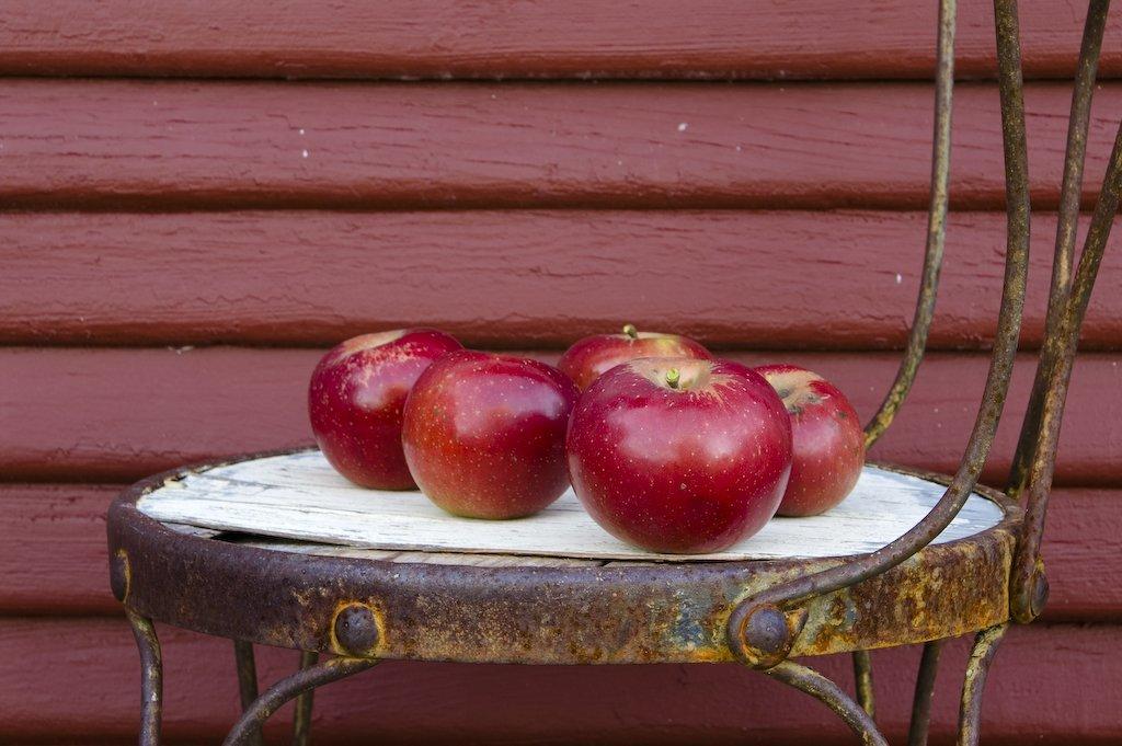 Svigermors æblekage 1