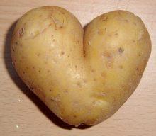 Kartofler i nye klæder