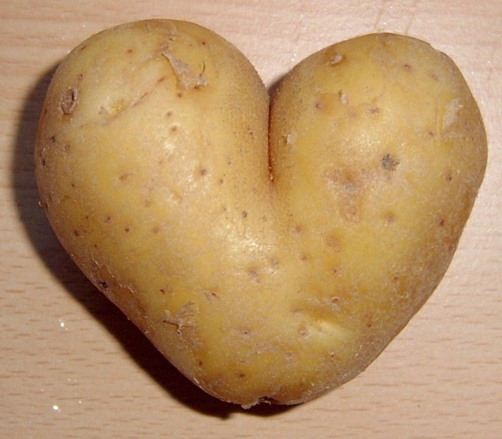 Kartofler i nye klæder 9