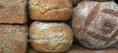 Rugbrød – opskrift på surdej