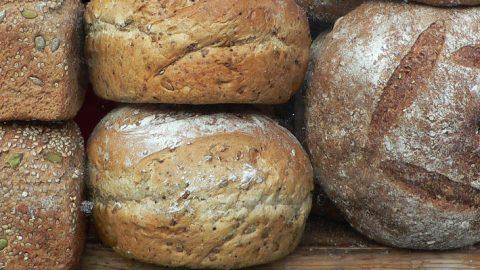 Lækre brød og kager – med bagemaskine