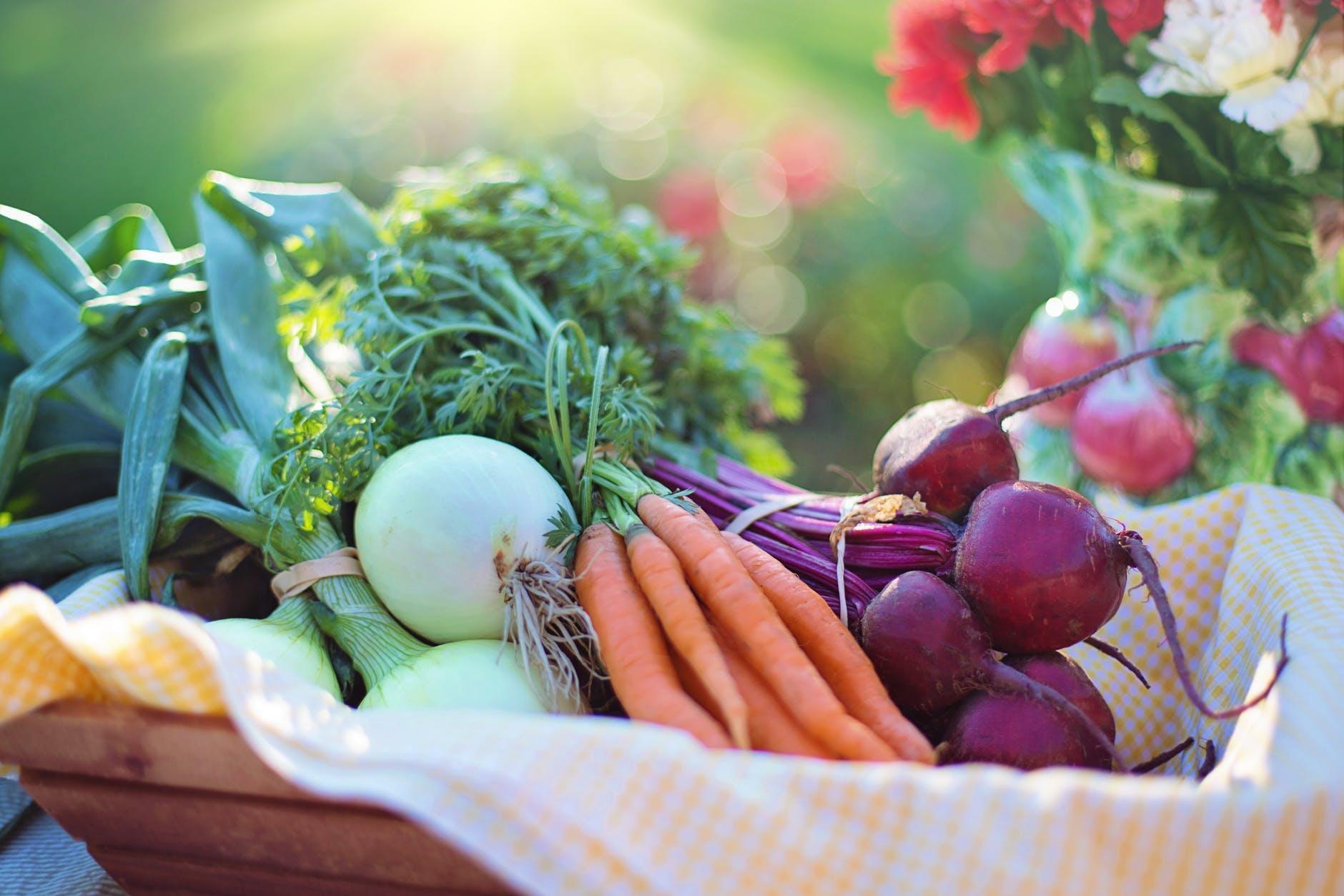 Lav lækre måltider med en god køkkenhave 4