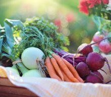 Tips og tricks mod tidsspild i hverdagen – lav en madplan eller kostplan
