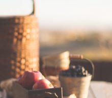 Tips til en succesfuld picnic-tur
