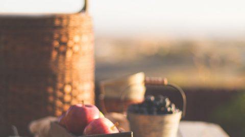 Tips til en succesfuld picnic-tur 6