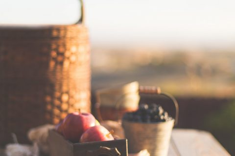 Tips til en succesfuld picnic-tur 1